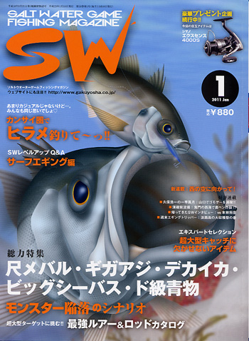 SW11_1.jpg