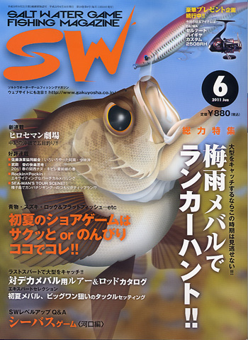 SW11_6.jpg