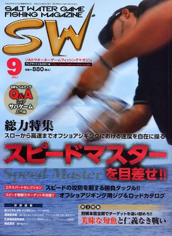 SW_12_9.jpg